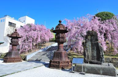 佐佳枝神社[6]Thumbnail